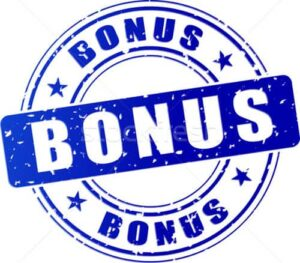 Pay Pal Payments Bonus